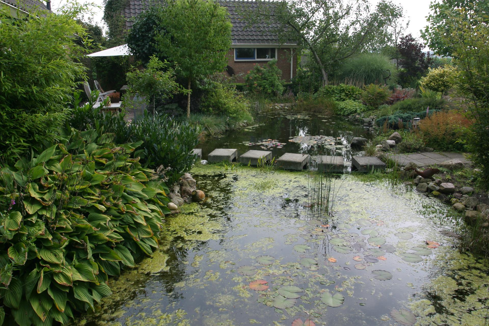 Tuinidee n achtertuin foto 39 s for Natuurlijke vijver maken