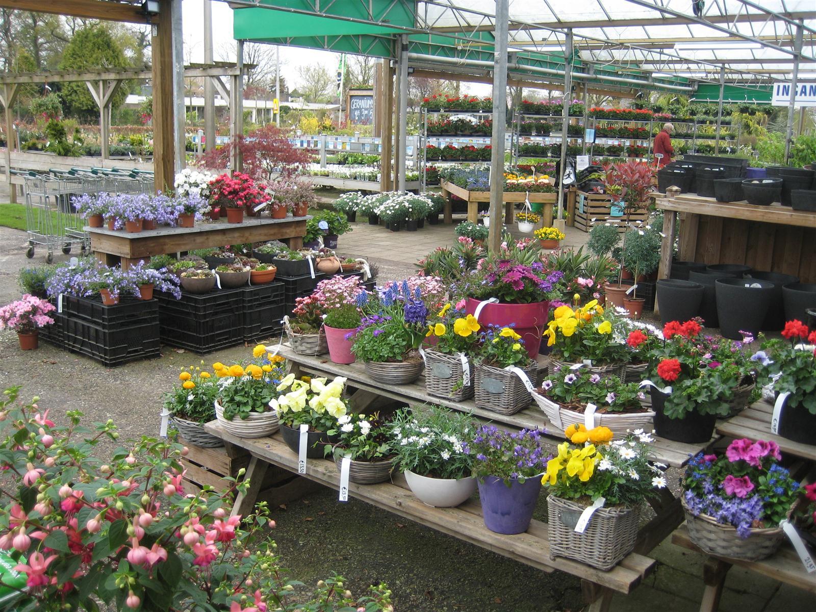 tuincentrum tuincentrum odink is weer klaar voor een fleurige zomer